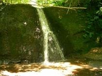 マカウシの滝