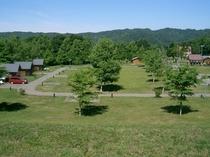 キャンプ場景色