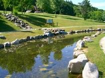 キャンプ場池