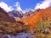 日本三大岩壁「一ノ倉沢」岩壁と紅葉のコントラストをお楽しみください♪