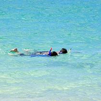 *【風景】透き通って美しいブルーの海!シュノーケリングでお魚を発見!