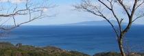 ★伊豆大島