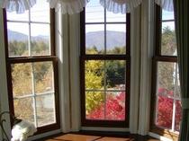 夏は緑、秋は紅葉の白樺越しに南アルプスが望めます。このお部屋は窓が7面あり、多くのご指名があります。