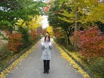 建物の前は、武田信玄の軍用道路だったといわれる「信玄棒道」の古道です。今はこんなにきれいで平和ですね