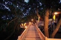 夜の露天風呂風景