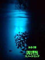 ここが青の洞窟!魚!