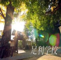 一般参拝料400円で午前9時から観光可能な足利学校。日本最古で知られ国の史跡にも指定されてます。