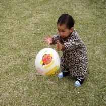 ベビープラン(芝生でボール遊び)
