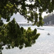 ★宿からの風景 子浦の海