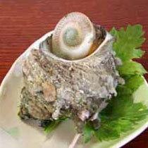 海鮮の宿 かまや 基本プラン  夕食例 さざえの壺焼