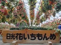 花いちもんめ2