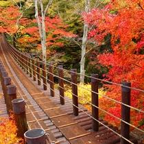 【花貫渓谷の紅葉】当館から56km、車で約1時間。11月中旬から下旬が見頃