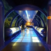 【ミュージアムパーク茨城県自然博物館】当館から97km。巨大なマンモスの骨格を展示