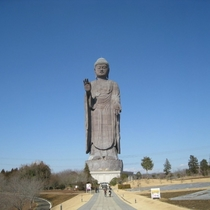 【牛久大仏】当館から85km。大きさは自由の女神の3倍!奈良の大仏が手のひらに乗っちゃいます
