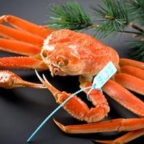 【近海産あつあつずわい蟹】