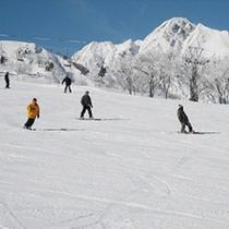 ウィンタースポーツ 003 スキー・八方