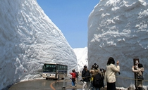 イベント 004 春・雪の大谷ウォーク
