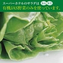 有機JAS野菜サラダ①