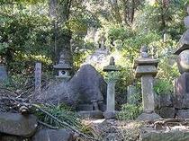西の武蔵塚