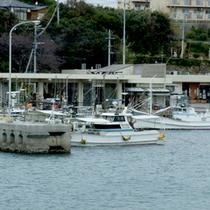 *当館目の前の海では、海釣りもお楽しみいただけますよ。