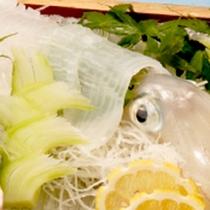 *【烏賊会席一例】調理直前まで泳いでいたイカをさばくので鮮度抜群!コリコリ食感と甘みが絶妙!