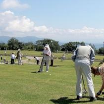*【グラウンドゴルフ】天然芝の全24ホールでプレイし放題♪戦略的なコースをお楽しみください。