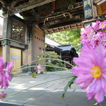 悠久の歴史に佇む静寂の宿坊。中心部にあり観光と癒しの拠点に