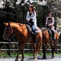 乗馬in乙姫ペンション村