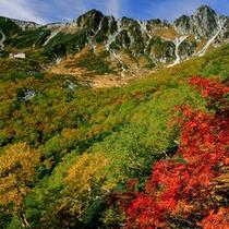 大自然の驚異を体感できるロープェイの終点。写真は秋の景色