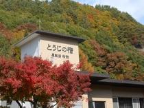 ◆桜館外観(紅葉)