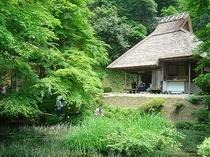 県特別指定名勝 吉水園 初夏、初秋に限定開園します。