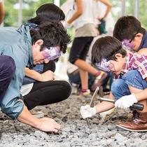 春から秋にかけてできる【化石発掘体験】は人気プログラム!