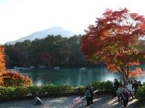 秋の五色沼