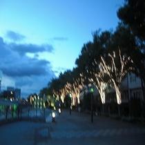 ◆水際公園(夕方)◆