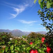 ■【秋】リンゴ畑