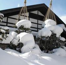 ■【外観】冬の昼