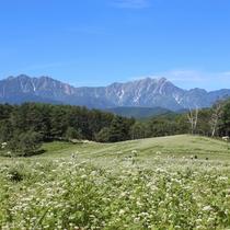 ■【夏】中山高原そば畑