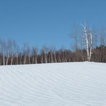 ■【冬】中山高原