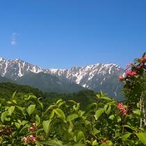 ■【春】黒沢高原