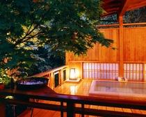 テラス庭付石露天風呂付客室 五月の間
