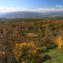 周辺景色(秋)
