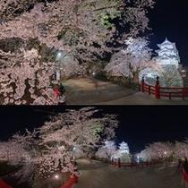 弘前城さくらまつり(夜)
