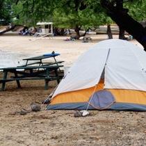 春~秋はキャンプもできます!予約もできます♪