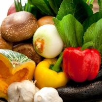 佐藤農園から毎朝届くお野菜は甘くで美味しい