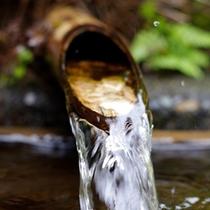300年かけて地下を流れて湧き出た霊峰白山の湧水は宝生亭の自慢。シャワーにも使われ、肌に優しいと評判