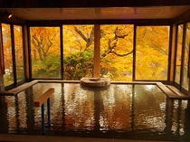 秋のご婦人大浴場
