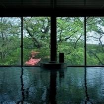 ◆春・女性大浴場