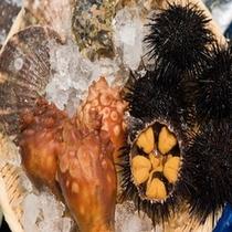 三陸の海産物