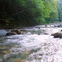 【一級河川:谷川】  *散歩がてらに川の流れを眺め、ゆったりした時間の流れを体感ください