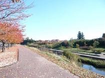 ◆逢瀬川河川敷◆